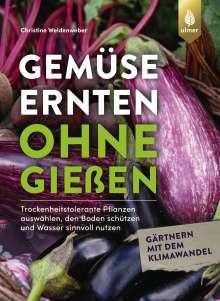 Christine Weidenweber: Gemüse ernten ohne gießen, Buch