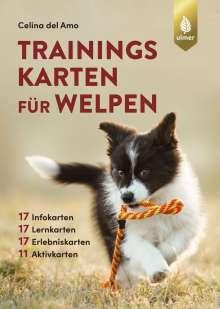 Celina del Amo: Trainingskarten für Welpen, Buch