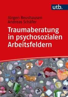 Jürgen Beushausen: Traumaberatung in psychosozialen Arbeitsfeldern, Buch