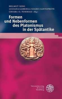 Formen und Nebenformen des Platonismus in der Spätantike, Buch