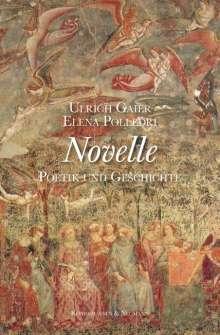 Ulrich Gaier: Novelle, Buch