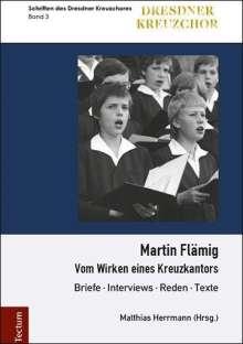 Martin Flämig, Buch