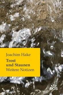 Joachim Hake: Trost und Staunen, Buch