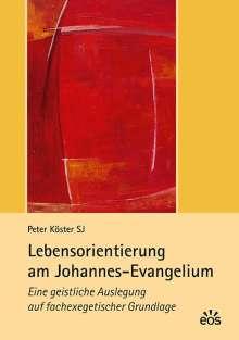 Peter Köster: Lebensorientierung am Johannes-Evangelium, Buch