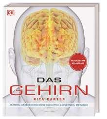 Rita Carter: Das Gehirn, Buch