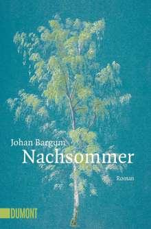 Johan Bargum: Nachsommer, Buch