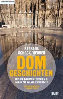 Barbara Schock-Werner: Dom-Geschichten, Buch