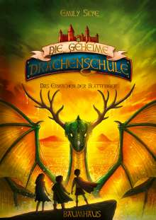 Emily Skye: Die geheime Drachenschule - Das Erwachen der Blattfinger, Buch