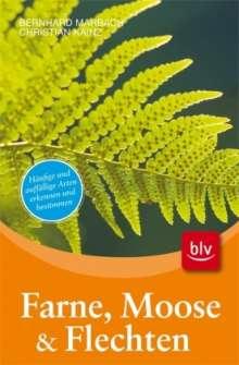 Bernhard Marbach: Farne, Moose und Flechten, Buch