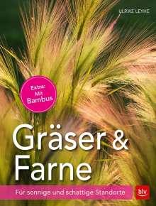 Ulrike Leyhe: Gräser und Farne, Buch