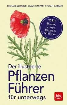 Thomas Schauer: Der illustrierte Pflanzenführer für unterwegs, Buch