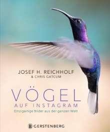 Vögel auf Instagram, Buch