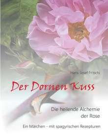 Hans-Josef Fritschi: Der Dornen Kuss, Buch