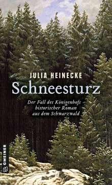 Julia Heinecke: Schneesturz - Der Fall des Königenhofs, Buch