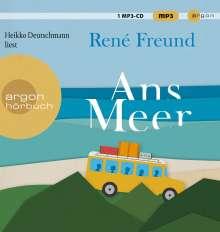 René Freund: Ans Meer, CD