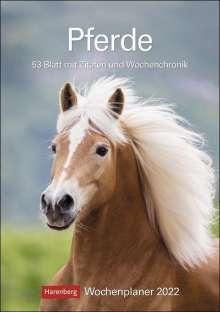 Christiane Slawik: Pferde 2022 Wochenplaner, Kalender
