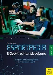 Timo Schöber: E-Sport auf Landesebene, Buch