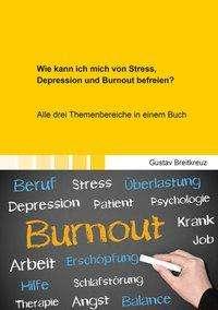Gustav Breitkreuz: Wie kann ich mich von Stress, Depression und Burnout befreien?, Buch
