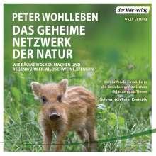 Peter Wohlleben: Das geheime Netzwerk der Natur, 6 CDs