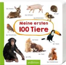 Meine ersten 100 Tiere, Buch