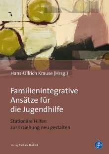 Familienintegrative Ansätze für die Jugendhilfe, Buch