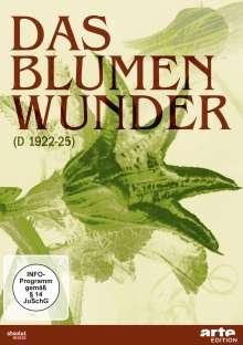 Das Blumenwunder, DVD