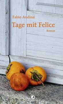 Fabio Andina: Tage mit Felice, Buch