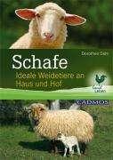 Dorothee Dahl: Schafe, Buch