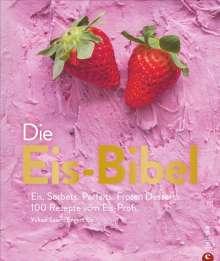 Yüksel Saier: Die Eis-Bibel, Buch