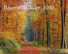 Martin Schubotz: Bäume-Wälder 2020 Großformat-Kalender 58 x 45,5 cm, Diverse
