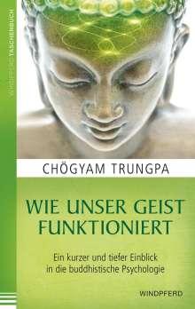 Chögyam Trungpa: Wie unser Geist funktioniert, Buch