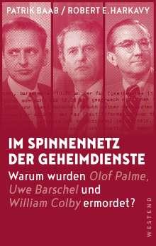 Patrik Baab: Im Spinnennetz der Geheimdienste, Buch