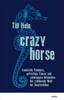 Till Hein: Crazy Horse, Buch