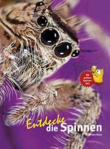 Kriton Kunz: Entdecke die Spinnen, Buch