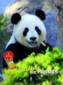 Eveline Dungl: Entdecke die Pandas, Buch