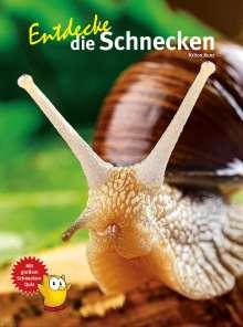 Kriton Kunz: Entdecke die Schnecken, Buch