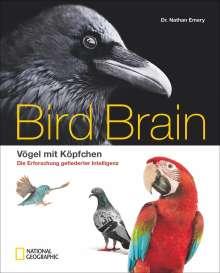 Nathan Emery: Bird Brain, Buch
