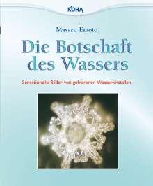 Masaru Emoto: Die Botschaft des Wassers, Buch