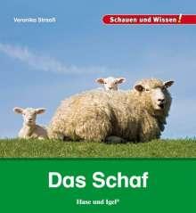 Veronika Straaß: Das Schaf, Buch
