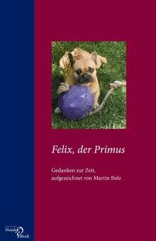 Martin Bolz: Felix, der Primus, Buch