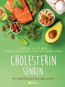 Aloys Berg: Cholesterin senken, Buch