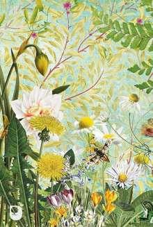 Meine Notizen Frühlingsblumen, Buch