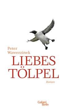 Peter Wawerzinek: Liebestölpel, Buch