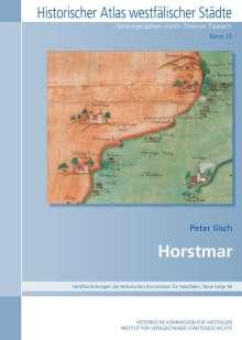 Peter Ilisch: Horstmar, Buch