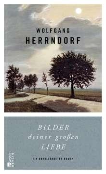 Wolfgang Herrndorf (1965-2013): Bilder deiner großen Liebe, Buch