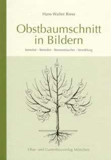 Hans W. Riess: Obstbaumschnitt in Bildern, Buch