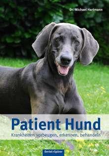 Michael Hartmann: Patient Hund, Buch