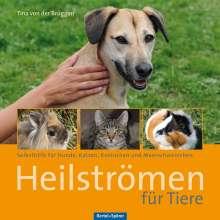 Tina von der Brüggen: Heilströmen für Tiere, Buch