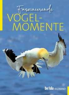Faszinierende Vogelmomente, Buch