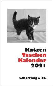 Katzen Taschenkalender 2021, Diverse